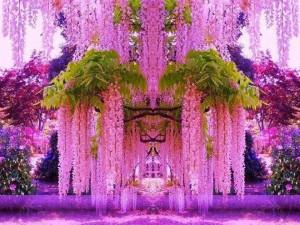 Powerpoint jardin botanico kawachi fuji japon ver ahora for Jardines kawachi fuji